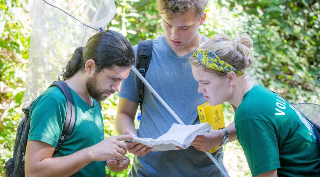 Conservation interns work together to identify the butterfly species spotted in the Barra Honda National Park.